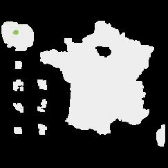 Carte de la France avec les régions de la vague D colorées en vert